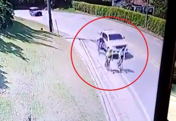Video | Afán fue la excusa del conductor que arrolló 3 ciclistas en Antioquia
