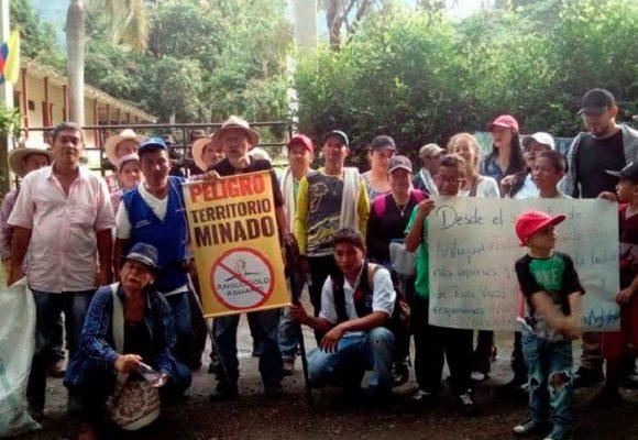 Negar licencia ambiental para impedir la minaQuebradona en Jericó