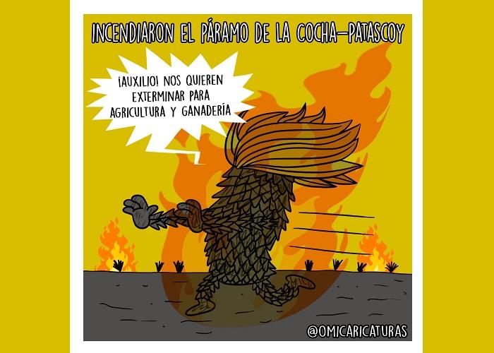 Caricatura: El exterminio de los páramos