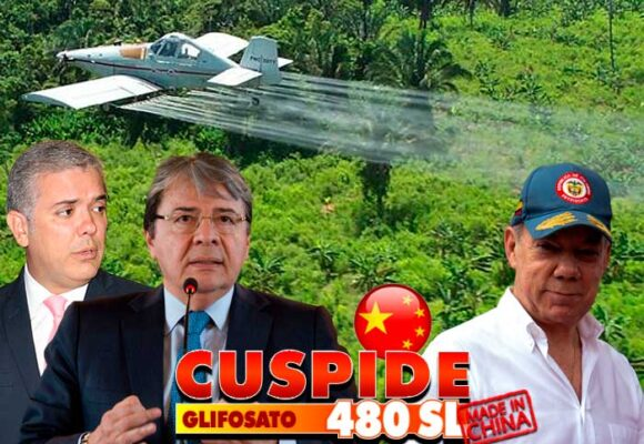 Cúspide 480SL, el glifosato chino con el que el gobierno se alista a fumigar