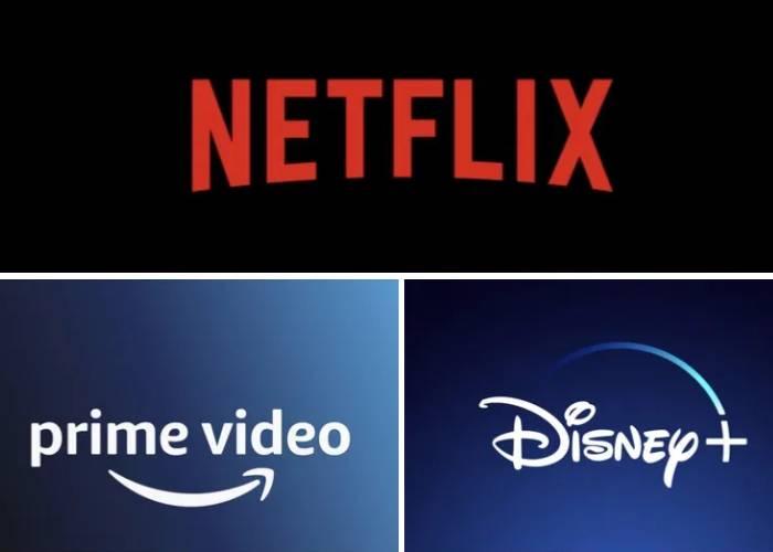 Las plataformas de streaming, las franquicias y las suscripciones