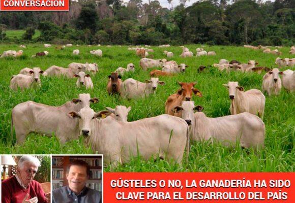 """""""La ganadería no es la causa de los males del campo colombiano"""""""