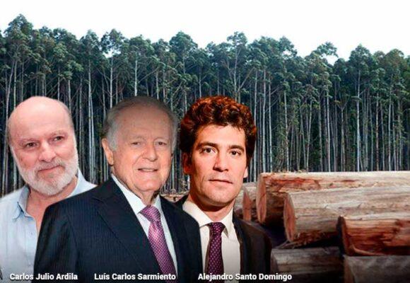 Sarmiento, Santodomingo y Ardila, también en el negocio de la madera en Colombia