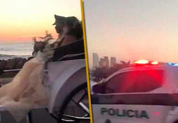 La Policía torea el avispero