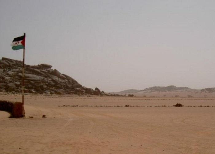 La urgencia de cesar el fuego y derribar el muro de la infamia en Sáhara Occidental