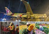 El imponente avión de Qatar Airways transformado para mover flores colombianas