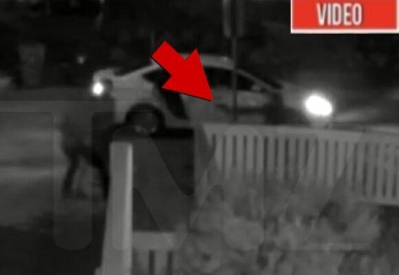 VIDEO: El momento en que los perros de Lady Gaga son robados por pistoleros