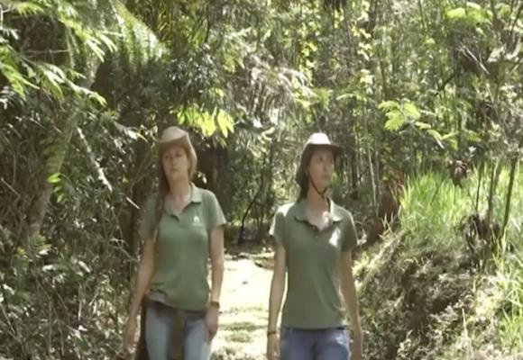 Las hermanas que están luchando contra la destrucción de la Amazonia
