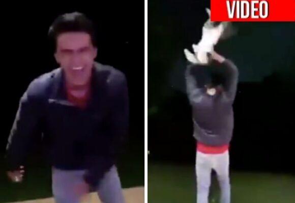 El niño play de Medellín que disfruta matando animales