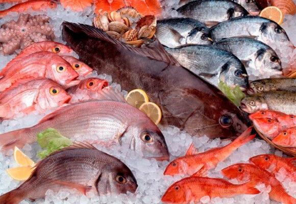¿Cómo seleccionar el mejor pescado en Semana Santa?