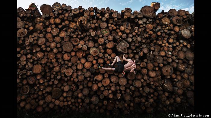 9-madera