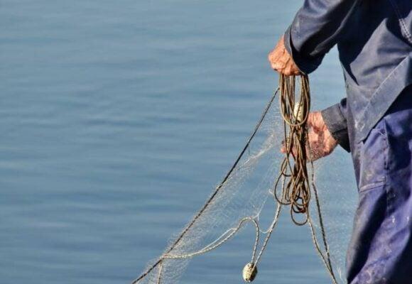 Prohibir la pesca de tiburón vulnera los derechos fundamentales de los pescadores