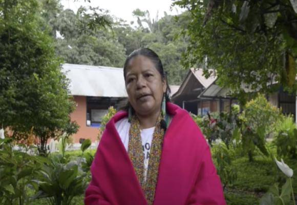 Las mujeres que se convirtieron en guardianas de la Amazonia