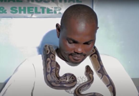 Video: El hombre que dedicó su vida a cuidar serpientes