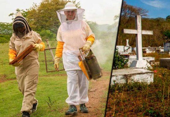 Una guerrera en los Montes de María que convirtió su parcela en un paraíso de abejas
