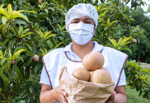 El exitoso Festival del Mango y el Níspero que se llevó a cabo en el Atlántico
