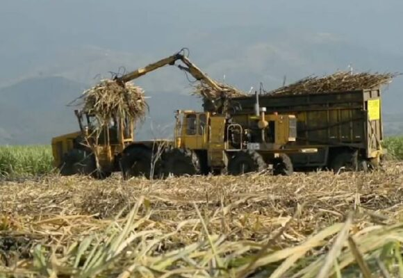 Contraloría busca salvaguardar la biodiversidad colombiana