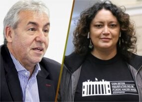 Los Verdes muestran nuevamente sus divisiones internas