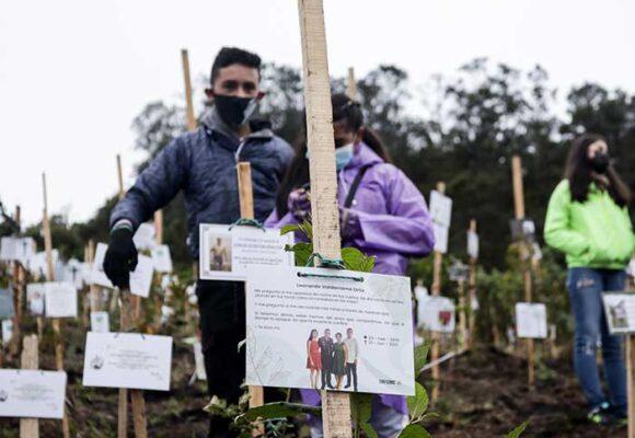 16.455 casos nuevos y 446 fallecimientos más por Covid en Colombia