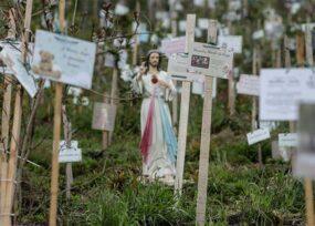 13.164 casos nuevos y 352 fallecimientos más por Covid en Colombia