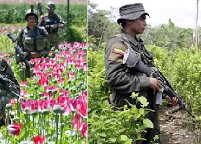 """Colombia y Afganistán: verdades y mentiras """"globalizadas"""""""