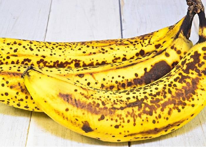 Vergonzoso: hallan hasta frutas podridas en alimentos para niños