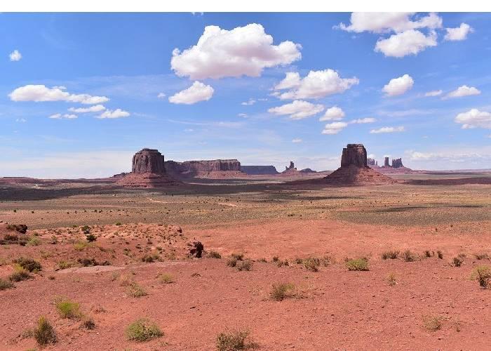 La muerte se extiende por el desierto de Arizona
