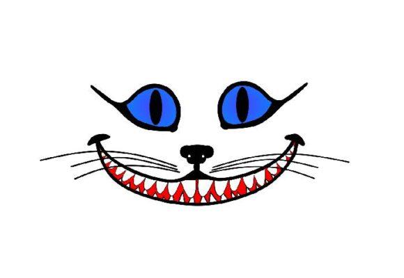 El Gato, otro precandidato presidencial