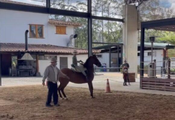Videos   Nada detiene la fiebre por los caballos de Uribe